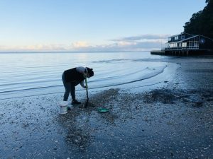 Dani the vet searching for crabs.